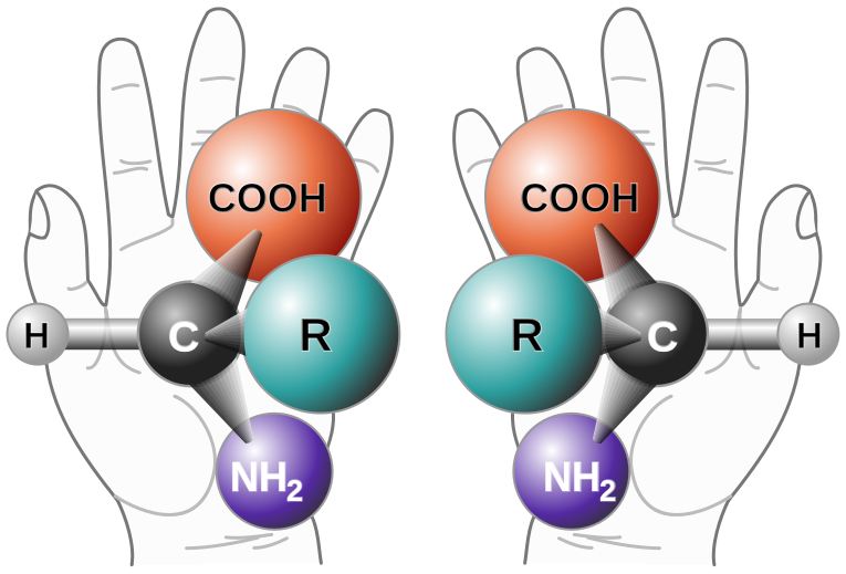 File:File Chirality with hands.png