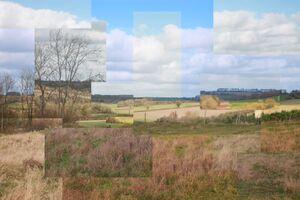 Cubism Field by Chelsea Morgan.jpg