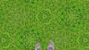 Grass on 2cb by inifinity.jpg