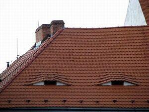 Squinting rooftop.jpg